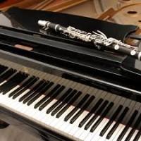 Ritratto di Martina Simone - Duo clarinetto e pianoforte